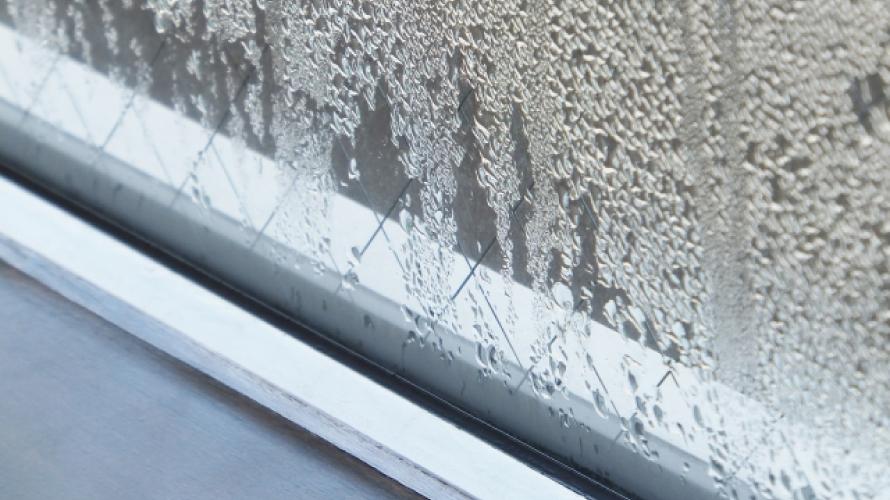 外壁塗装で結露によるカビを効果的に予防する方法