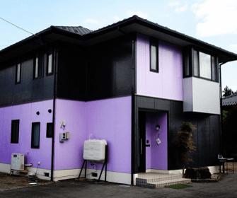 奇抜な色【黒色×紫色】