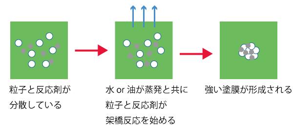 水性反応硬化イメージ図