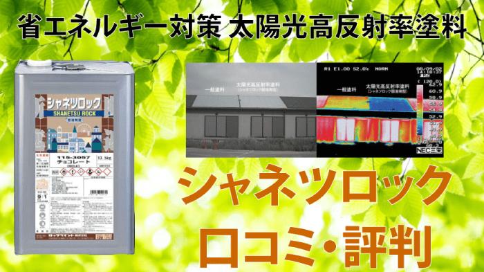 最安値ランキング【シャネツロックルーフSi】