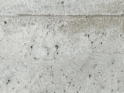 ホワイト外壁