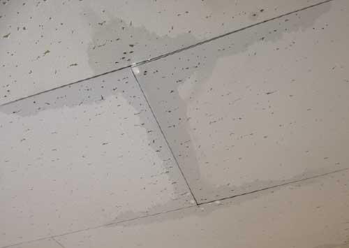雨漏り事例